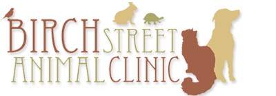 Birch Street Animal Clinic